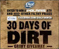 dial for men 30 days of dirt sweeps