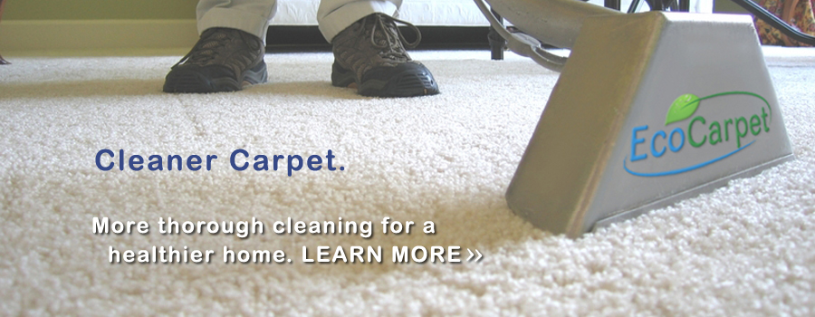 ecocarpet cleaning